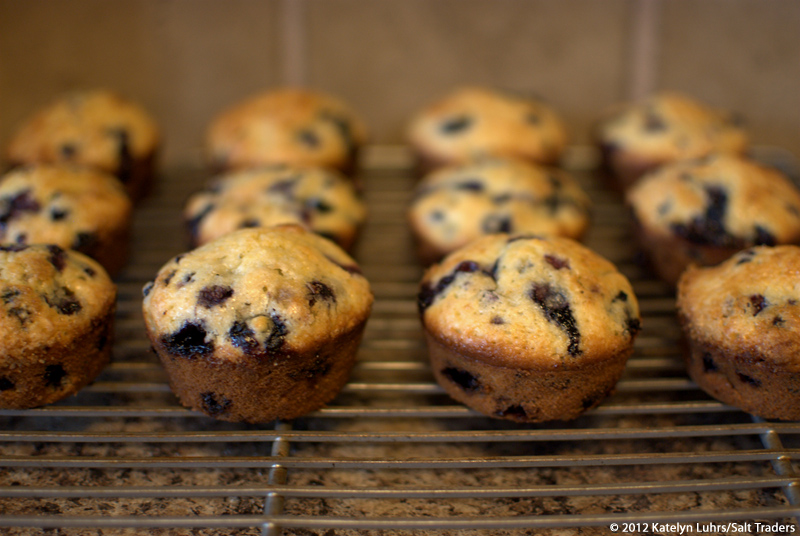 Baked Muffins 800